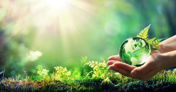 Jornal Campeão: Dia Mundial do Ambiente é dedicado à Biodiversidade