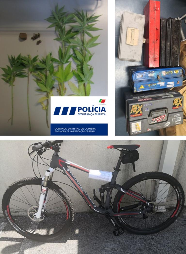 Jornal Campeão: Operação de buscas da PSP leva a apreensão de artigos furtados em garagens