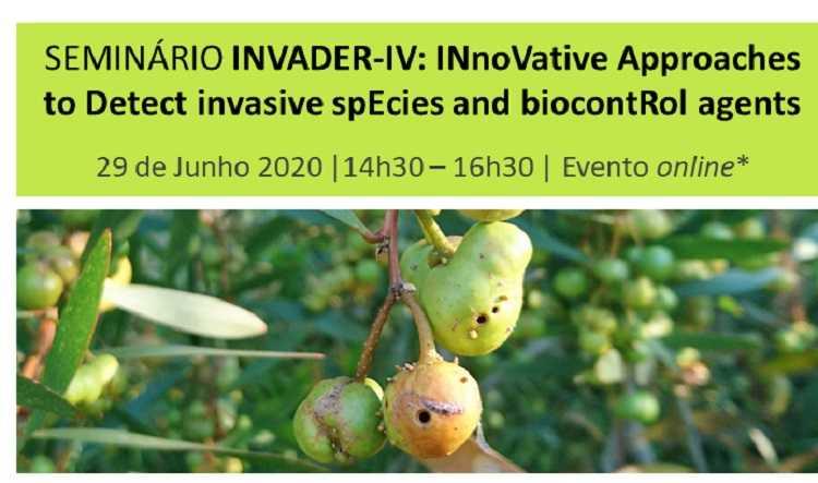 Jornal Campeão: Resultados de projecto INVADER-IV apresentados em seminário online