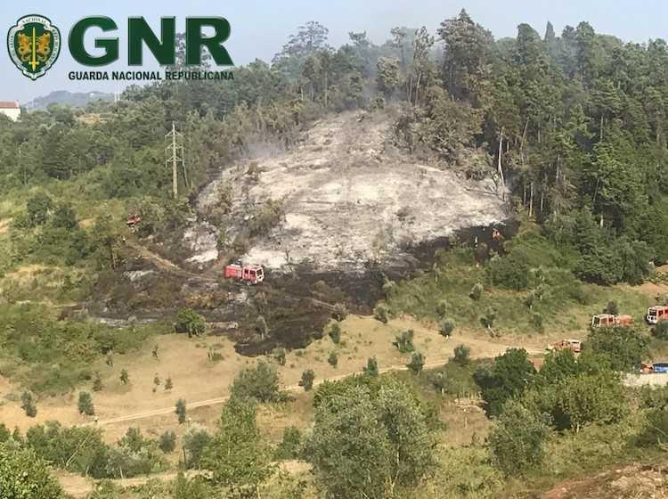Jornal Campeão: GNR identificou homem por incêndio florestal em Coimbra