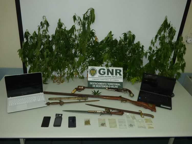 Jornal Campeão: Soure: GNR deteve duas pessoas por tráfico de drogas