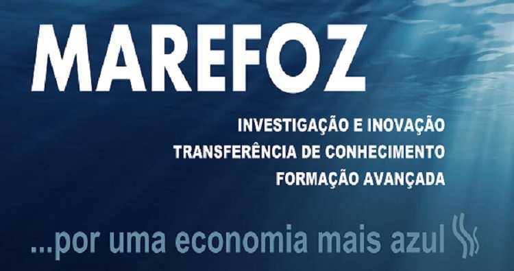 Jornal Campeão: Laboratório MAREFOZ da UC premiado no campo da sustentabilidade