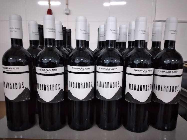 Jornal Campeão: Vinho de Penela ganha ouro em concurso em Itália