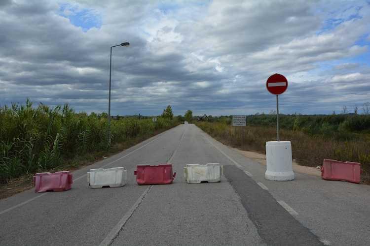 Jornal Campeão: Montemor-o-Velho corta estrada do Campo para trabalhos de limpeza