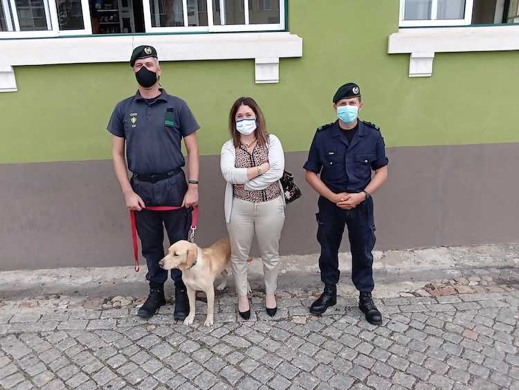 """Jornal Campeão: Relatório de """"Cinoterapia"""" confirma potencialidades do projecto"""