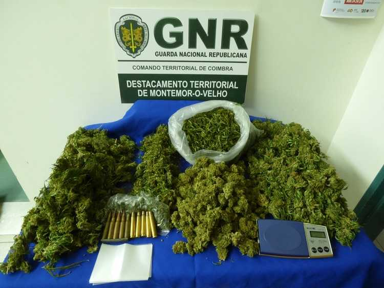Jornal Campeão: Casal detido por tráfico de droga na Figueira da Foz