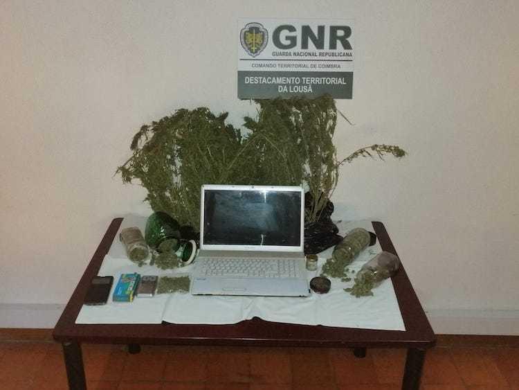 Jornal Campeão: GNR detém homem em Góis por tráfico de droga