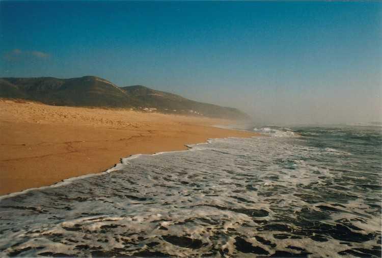 Jornal Campeão: Cordão Dunar entre a Praia de Quiaios e Murtinheira vai ser recuperado