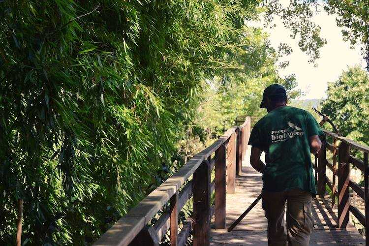 Jornal Campeão: O Homo sapiens é a espécie do mês no Parque Biológico da Serra da Lousã