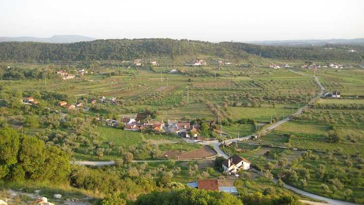 Jornal Campeão: 'CULTIVAR' promove seminário sobre dinâmicas agrícolas de índole local