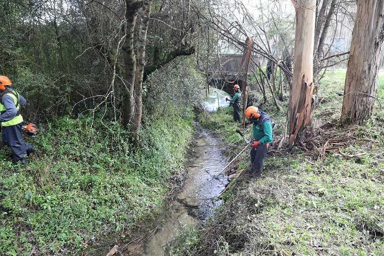 Jornal Campeão: Câmara de Cantanhede promove limpeza e desobstrução de linhas de água