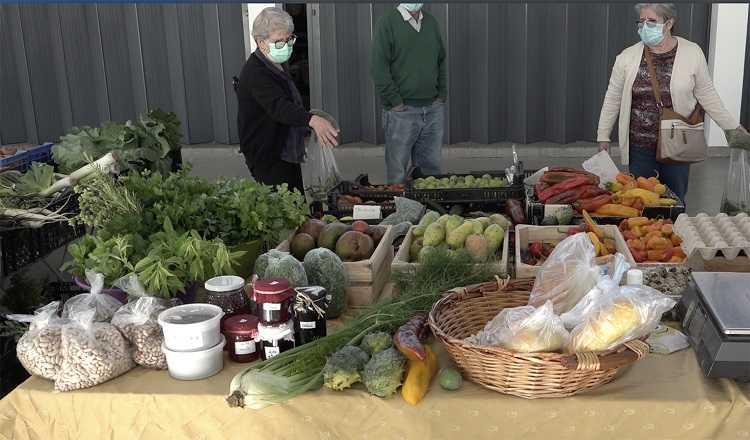 Jornal Campeão: Mercado de Cantanhede aproxima consumidores dos produtores locais
