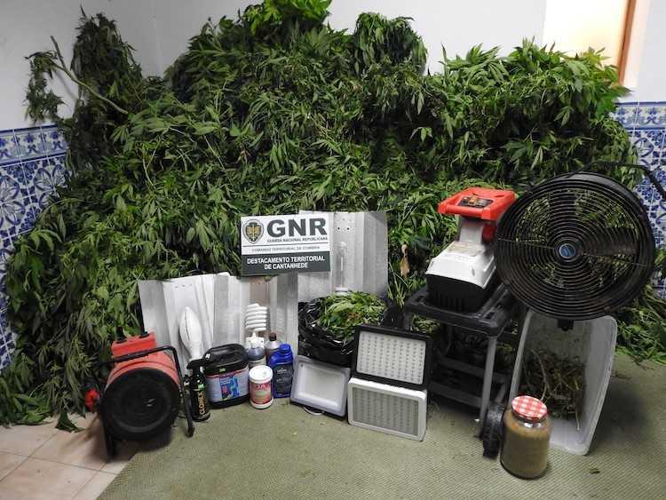 Jornal Campeão: GNR detém homem em Mira por tráfico de droga