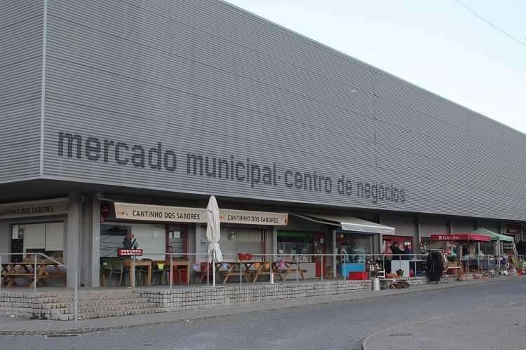 Jornal Campeão: PSD de Miranda do Corvo defende oferta de espaços para fixar jovens empreendedores