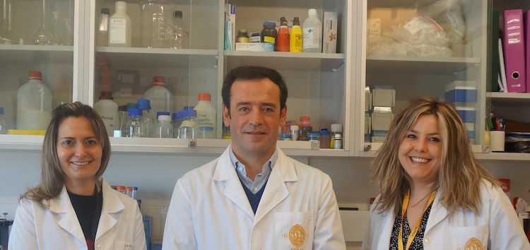 Jornal Campeão: UC: Consumo continuado de mirtilo tem forte impacto no fígado
