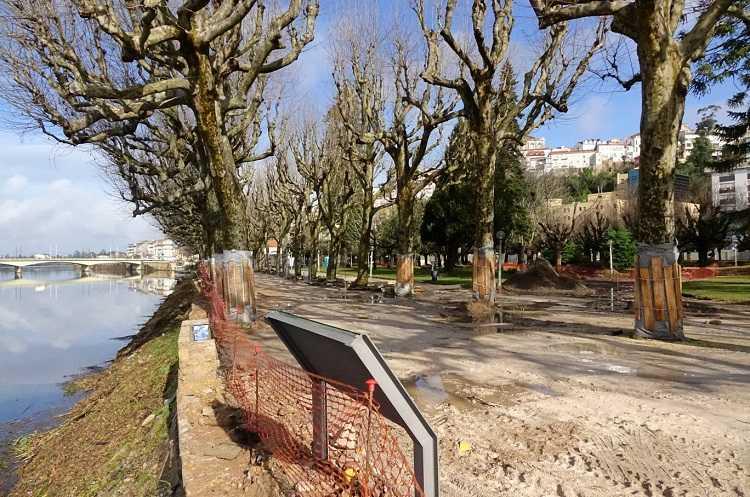 Jornal Campeão: CMC diz que requalificação vai colocar mais árvores no Parque Manuel Braga