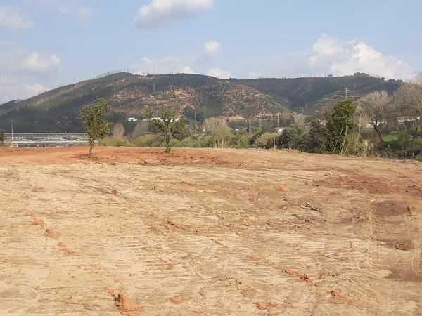 Jornal Campeão: Coimbra: Câmara confirma contactos para criação de campo de golfe junto ao Mondego