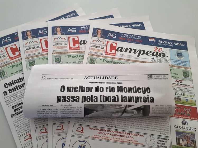Jornal Campeão: O melhor do rio Mondego passa pela (boa) lampreia