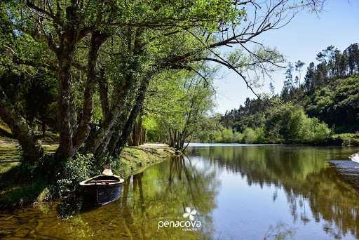 Jornal Campeão: Penacova vai criar área integrada de gestão da paisagem do Vale do Alva