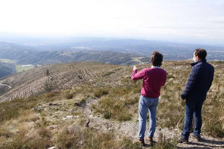Jornal Campeão: Arganil: arrancaram as acções de rearborização da Floresta da Serra do Açor