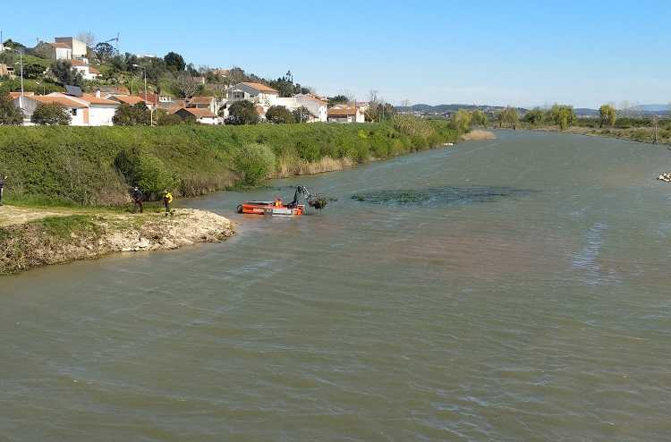 Jornal Campeão: Apresentado veículo que vai combater plantas invasoras no Baixo Mondego