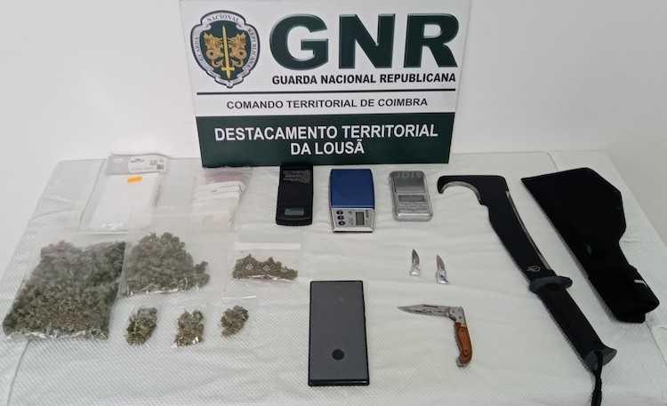 Jornal Campeão: Homem detido em flagrante por tráfico de droga em Miranda do Corvo