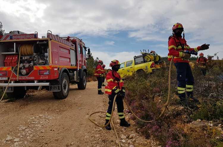 Jornal Campeão: Poiares: Serra do Bidoeiro foi alvo de acção de fogo controlado