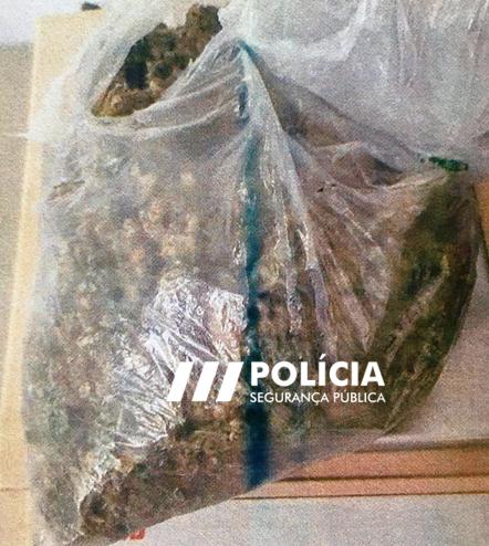 Jornal Campeão: Homem detido em Buarcos por tráfico de estupefaciente, resistência e coacção