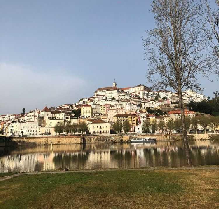 Jornal Campeão: Câmara de Coimbra e Critical lutam por uma cidade mais inteligente e sustentável