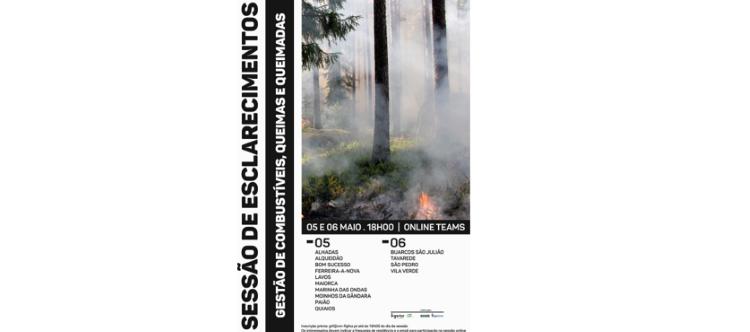 Jornal Campeão: Figueira da Foz promove sensibilização para a defesa da floresta contra incêndios