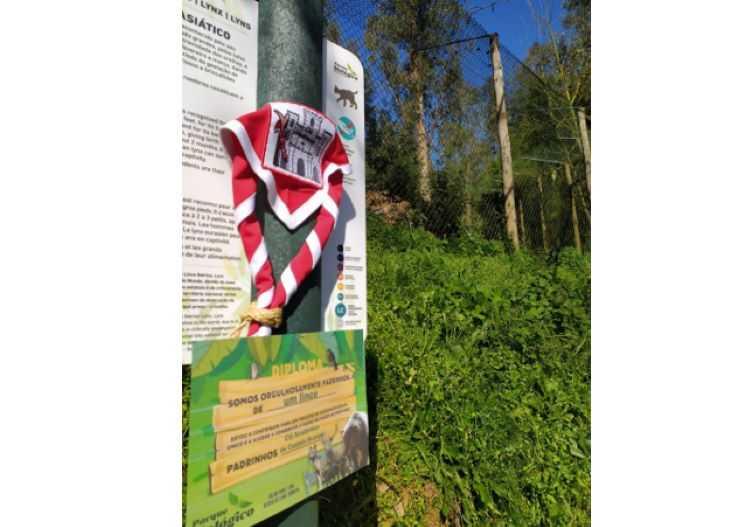 Jornal Campeão: Lince do Parque Biológico da Serra da Lousã tem novo padrinho