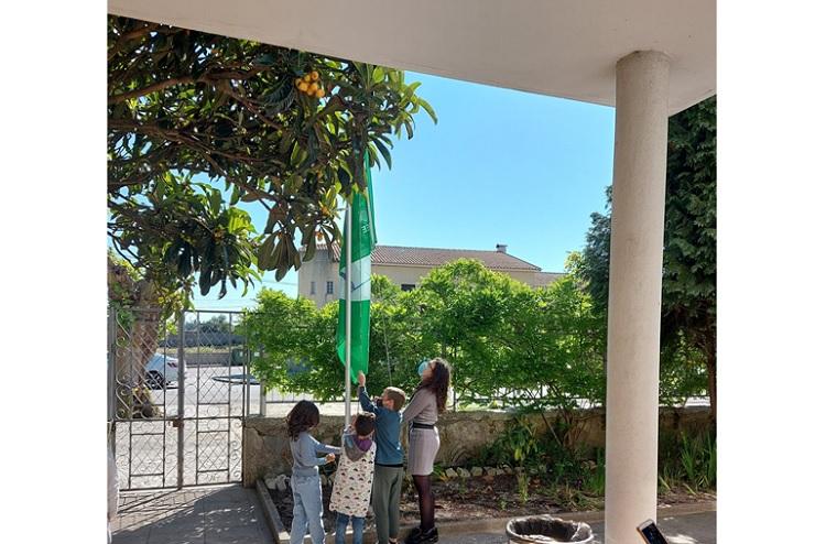 Jornal Campeão: Escolas de Mira hasteiam bandeiras do ambiente