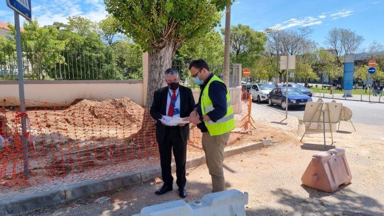 Jornal Campeão: Coimbra planta árvores na Solum com requalificação de caminhos pedonais