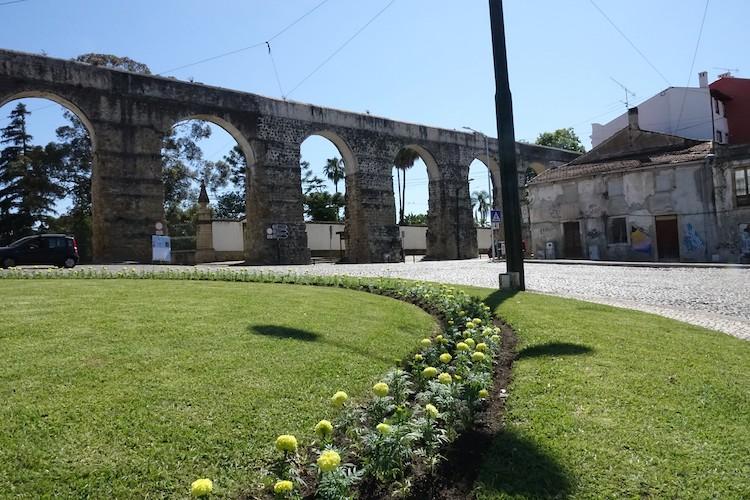 Jornal Campeão: Câmara de Coimbra planta 50 mil flores em vários espaços para colorir a cidade