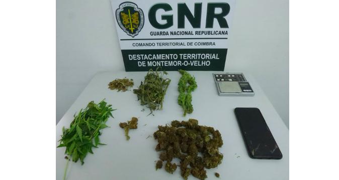 Jornal Campeão: GNR detém em Montemor-o-Velho por tráfico de droga