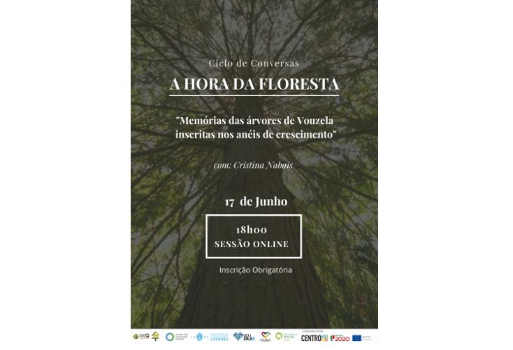 """Jornal Campeão: Ciclo de conversas """"A hora da floresta"""" da UC aborda """"Memórias das árvores"""""""