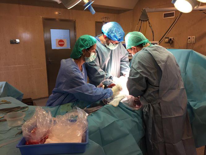 Jornal Campeão: CHUC deu início ao programa de doação de órgãos em paragem circulatória