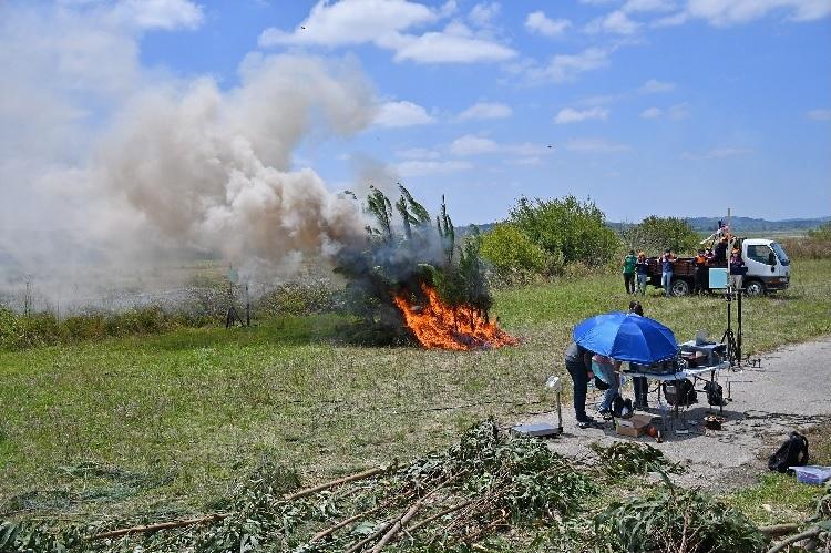 Jornal Campeão: Investigadores realizaram ensaios de comportamento do fogo em Montemor-o-Velho