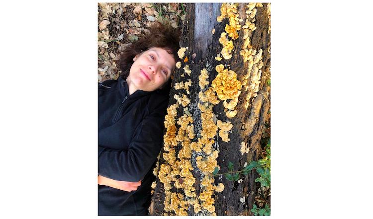Jornal Campeão: UC: Cientistas defendem inclusão de fungos nas metas globais