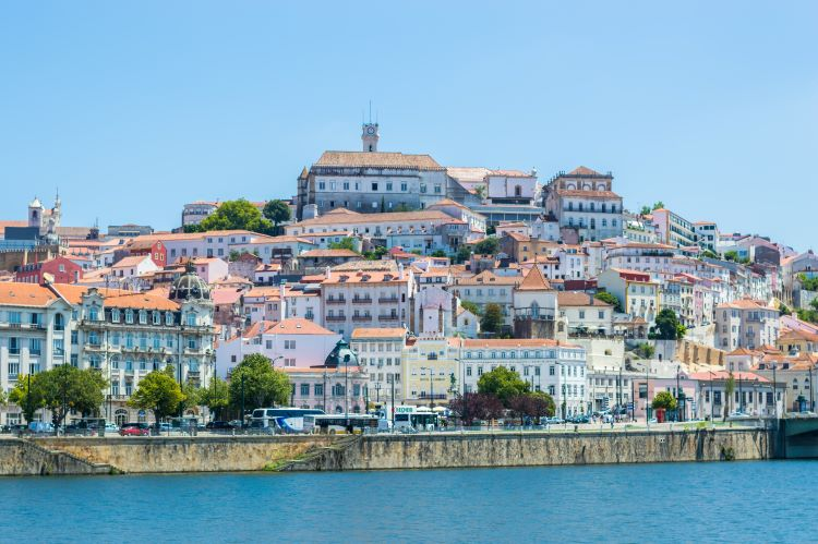 Jornal Campeão: Coimbra tem bons profissionais na área da tecnologia e digital