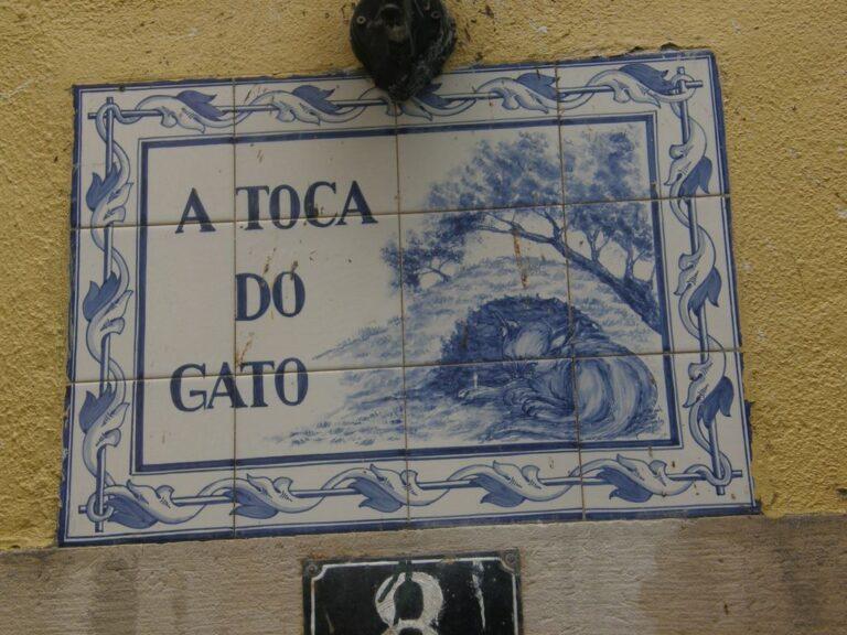 Jornal Campeão: Taberna Toca do Gato reconhecida como entidade de interesse histórico e cultural
