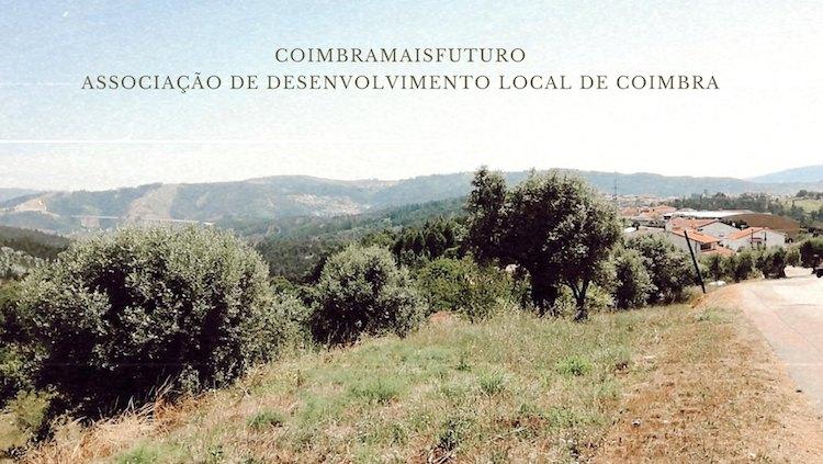 Jornal Campeão: CoimbraMaisFuturo reforça parceria com Politécnico de Coimbra