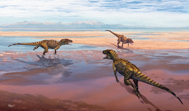 Jornal Campeão: Revelados novos dados sobre pegadas de dinossauros no Cabo Mondego