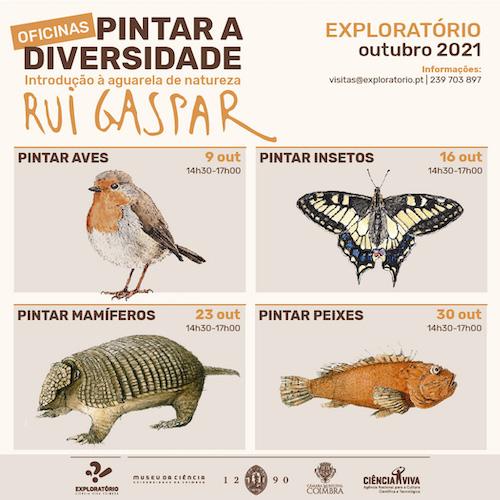 Jornal Campeão: Oficinas de introdução à aguarela de natureza no Exploratório de Coimbra