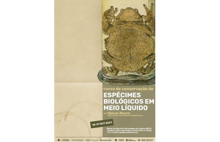Jornal Campeão: Museu da Ciência promove recuperação de espécimes biológicos em meio líquido